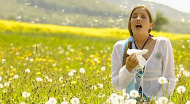 Tips for People who have Allergies