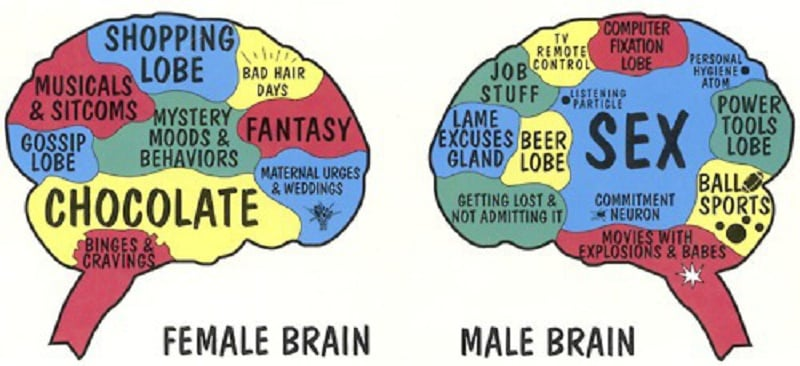 similarities between brain and mind relationship