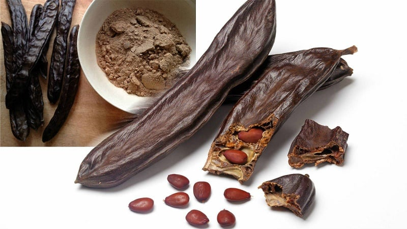 CAROB – Natural miracle forever