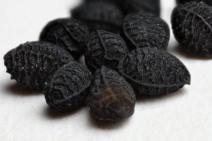 Black Seeds Cures All Diseases Human N Health