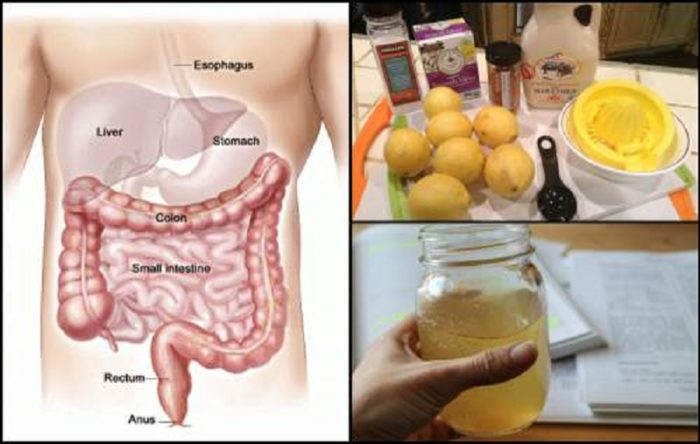 Cleanse-Your-Colon-For-Perfect-Health