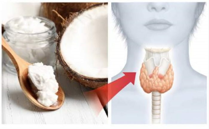This Is How Your Thyroid Reacts When You Eat Coconut Oil