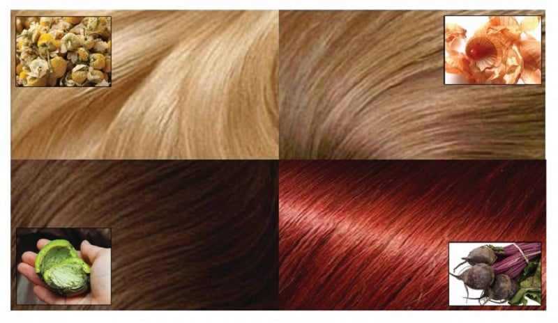 7 Ways to Color Your Hair Naturally : Human N Health